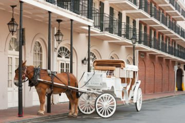 History And Culture Of New Orleans