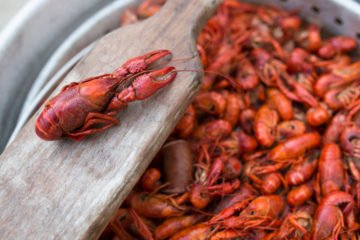 Top 4 Traditional NOLA Dishes You Must Try