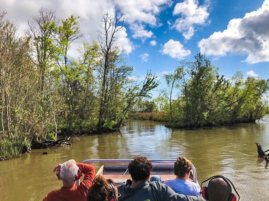 bayou-swamp-tours-4-min