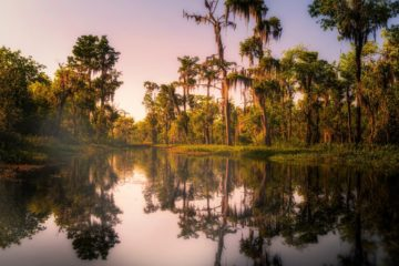 What Is A Bayou & What Is There To Do?