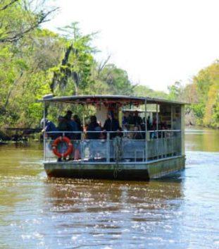 coveredboatonswamptourLouisiana-e1583343046175-358x407-min